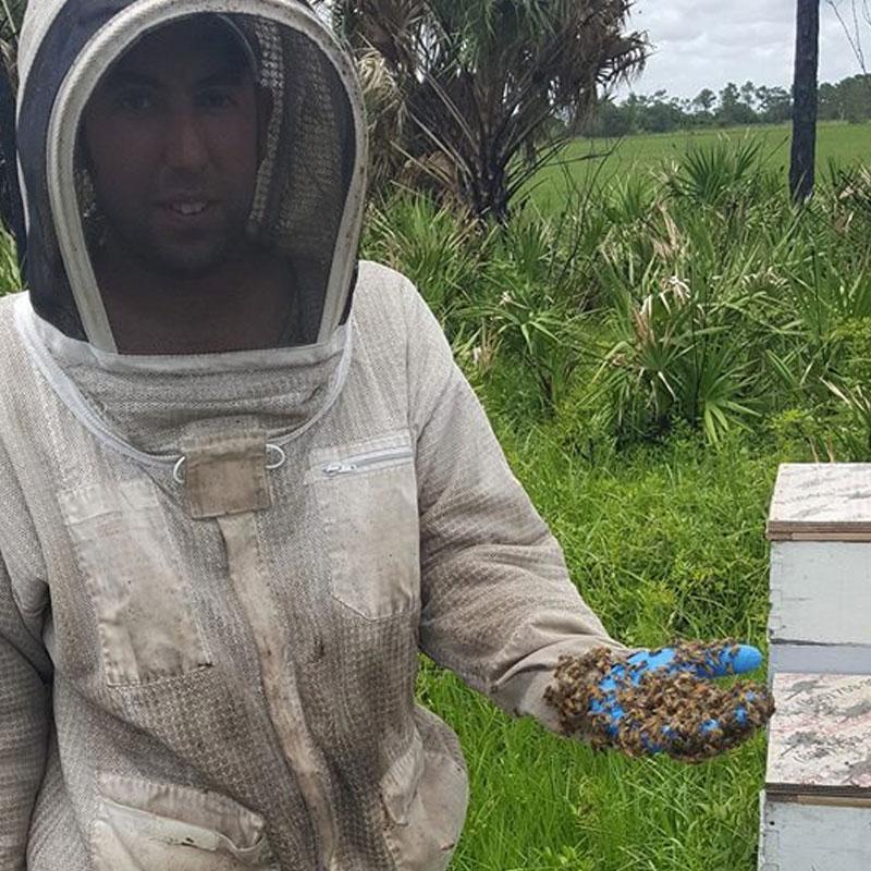 Central Florida Bee Yard