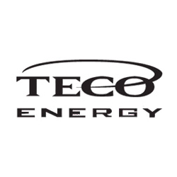 teco energy bee removal