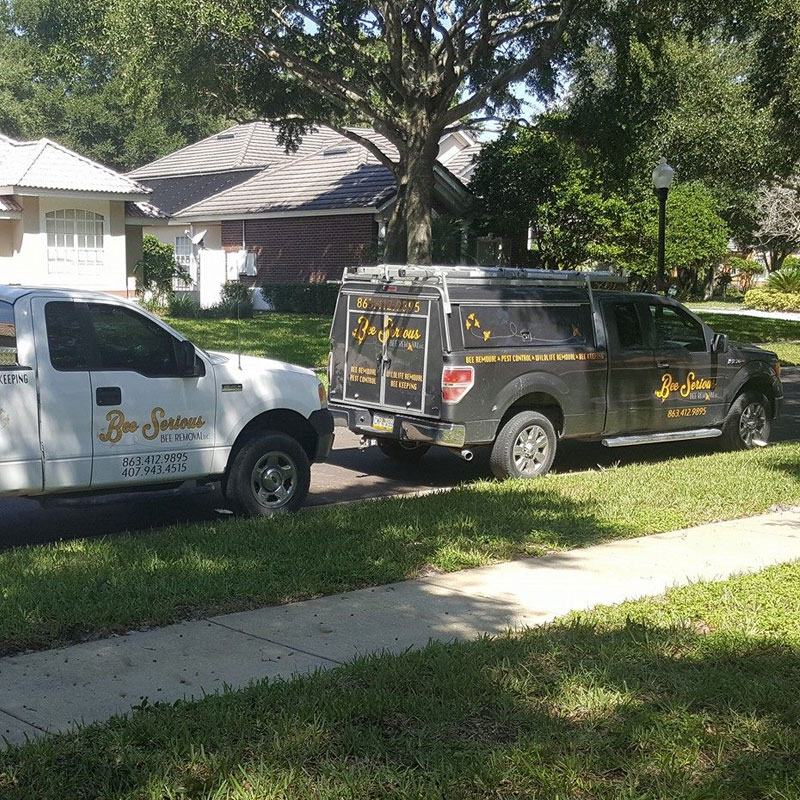 bee removal service trucks