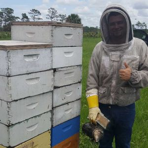 central florida bee nucs for sale