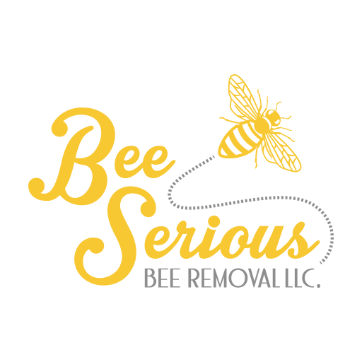 Tampa Bee Removal Services, Beekeeping, and Wasp Removal