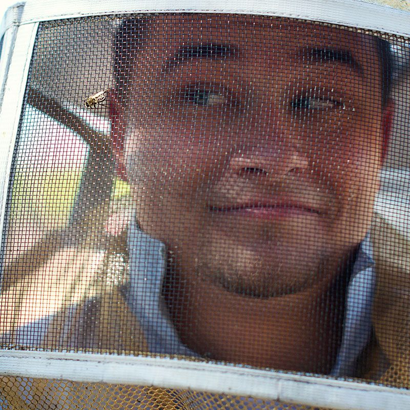 About Bee Serious Bee Removal